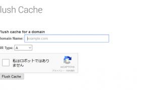 GoogleのPublic DNSのFlush Cache が上手くいかないときの対処法